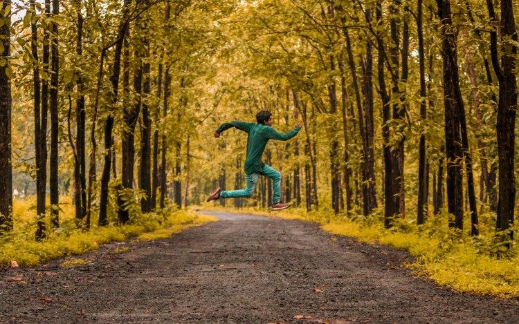 landscape-tree-nature-forest-path-grass-1417370-pxhere.com