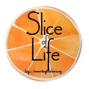Slice of Life writing logo from Two Writing Teachers website