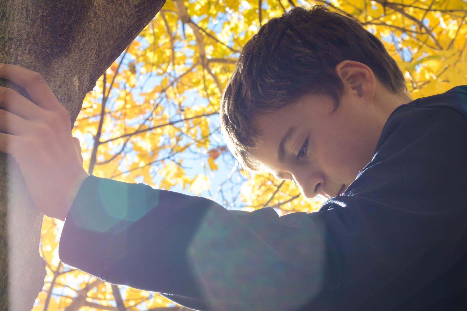 More autumn leaves and a boy contemplates cinquains